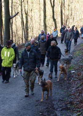 social-walk01